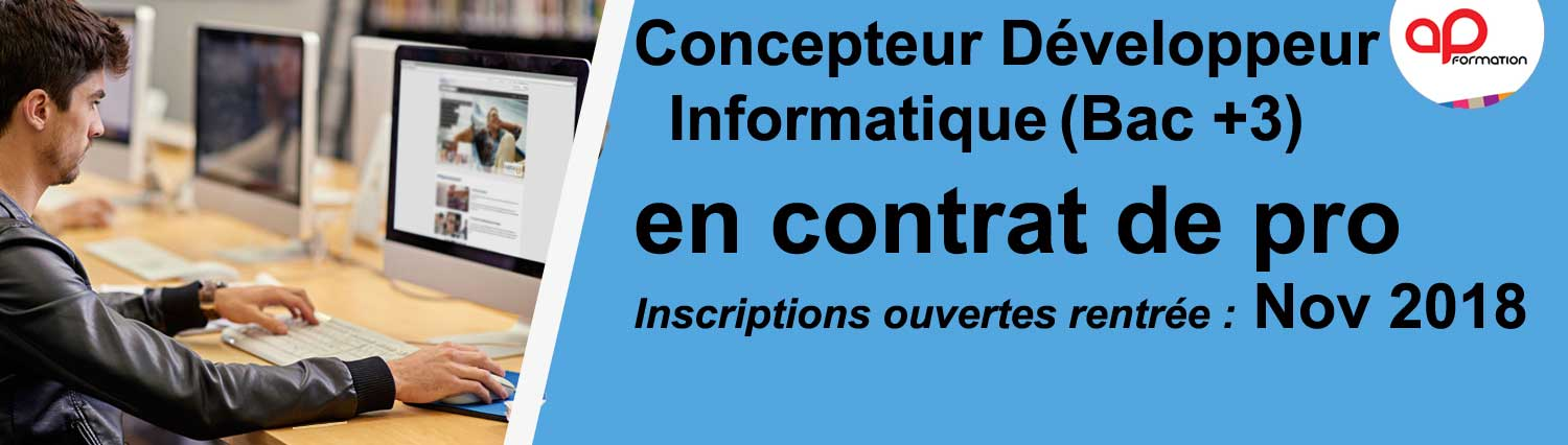 Contrat pro développeur d'applications